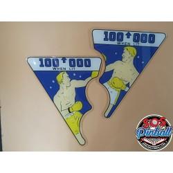 Décors flipper World champ...